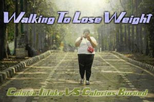 should you walk everyday to lose weight